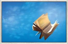 Das fliegende Buch
