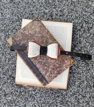 Fliege aus Buchseite