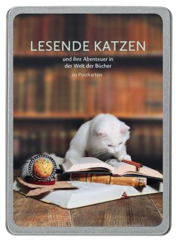 Lesende Katzen Postkarten
