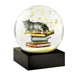 Schneekugel Katze mit Büchern